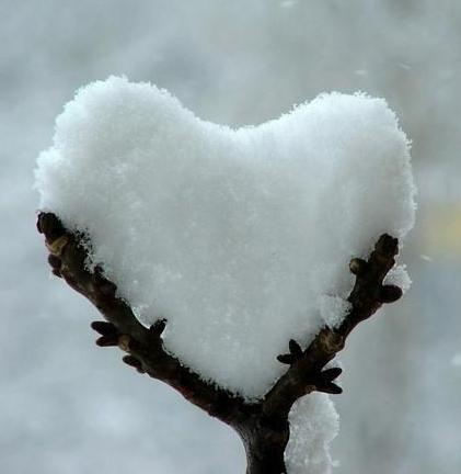 neve-cuore.jpg